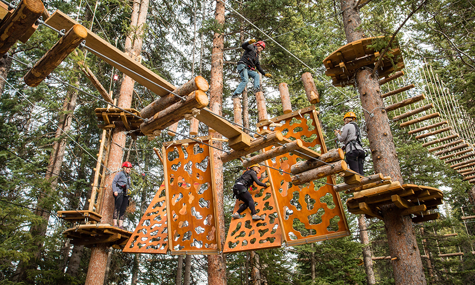The Lost Forest - Mountain Adventure Center | Snowmass Village ...